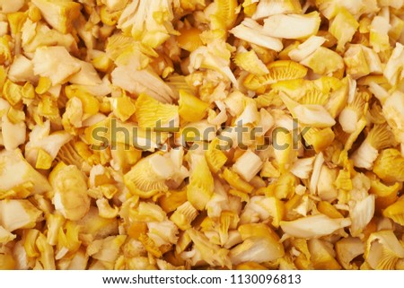 Surface coated with the sliced chanterelle mushrooms, close-up crop as a backdrop composition #1130096813