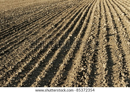 Surface of cultivation land, agriculture. - stock photo