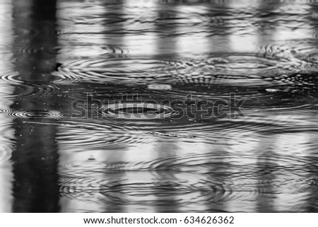 Surface of garden pond with fence shadows and concentric rings (with slight motion blur) during a light sprinkle, in black and white, for themes of water, precipitation, or transience #634626362