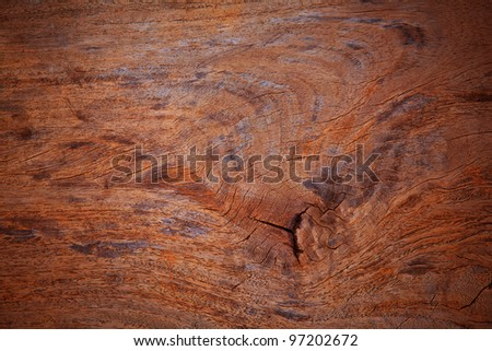 surface of old wood cut texture