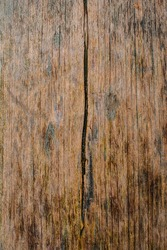 surface of the old board is covered with cracks. Autumn season, November. Web banner. Cover.