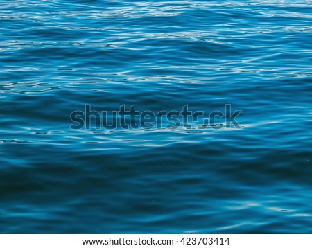 Surface of the Water on a Bright Day from a Boat #423703414