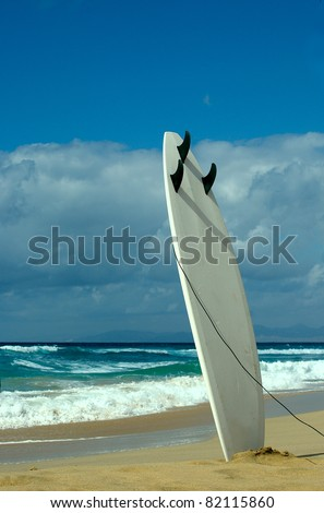 surfboards awaiting fun in the sun