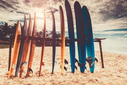 Surfboards, many different surf boards on the beach, water sport, happy active summer vacation