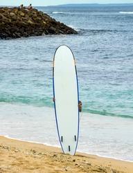 Surfer holding long surf board near the ocean