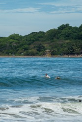 Surfer on the sea with palm trees on the background. the sky is blue. Arugam Bay, Sri Lanka. Portrait format