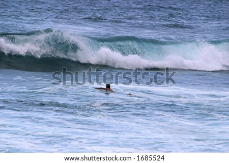 Surfer paddling out to meet wave.