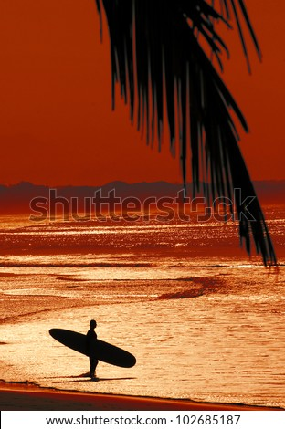 Surfer with surf board in Costa Rica