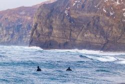Surfers ride the waves in Vladivostok in winter.
