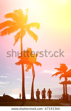 Surfers silhouettes walking under palm trees at beautiful tropical beach in Hawaii