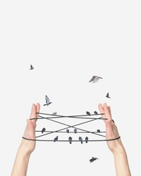 Surreal abstract photograph composite of two hands cats cradle and pigeons birds sitting on telephone power lines abstract creative surrealistic photography