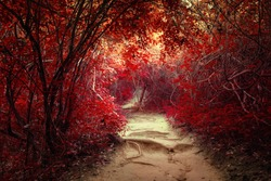 Surreal colors of fantasy landscape at tropical jungle forest with tunnel and path way through lush