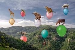 Surreal conceptual scene with animals flying on colorful balloons in the huge canyon covered with green forest under the beautiful blue sky and white clouds. Beauty of nature, conservancy concept