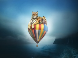 Surreal image of a tiger sitting on an air balloon floating above the river on a foggy day.