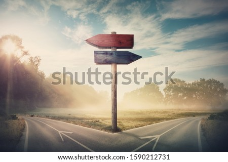 Surreal landscape with a split road and signpost arrows showing two different courses, left and right direction to choose. Road splits in distinct direction ways. Difficult decision, choice concept. ストックフォト ©