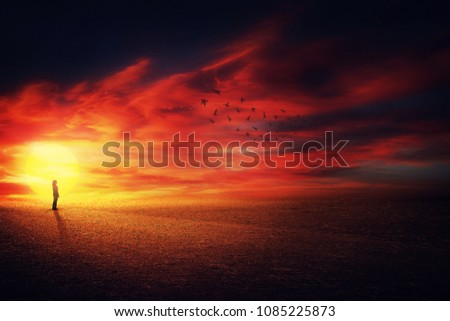 Surreal scenery view as a girl silhouette on the beautiful sunset background watching at a flock of birds flying up in the sky. Life journey concept.