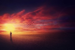 Surreal scenery view as a wanderer guy silhouette walking in front of beautiful sundown background and a flock of birds flying up in the sky. Life journey concept.