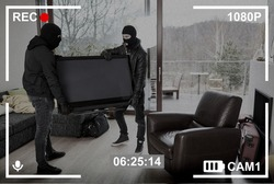 Surveillance camera records two intruders stealing a large TV from the living room