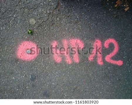 Surveying point with sprayed marking Zdjęcia stock ©