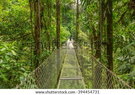 Suspended bridge at natural rainforest park, Costa Rica #394454731