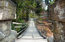 Suspension bamboo bridge in arboretum Sochi, Russia.