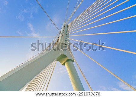 Suspension bridge #251079670