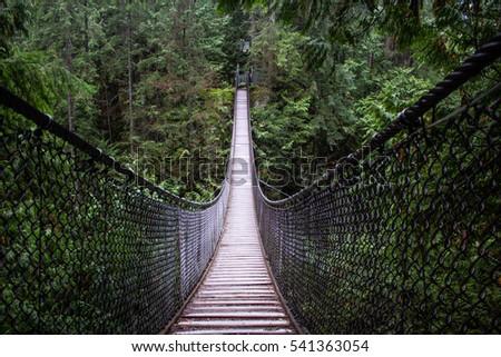 Suspension Bridge #541363054