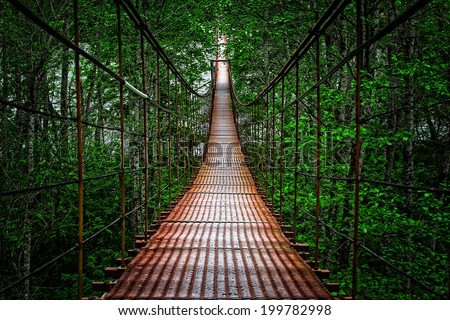 Suspension bridge, Crossing the river, ferriage in the woods #199782998
