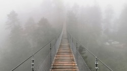 Suspension bridge in mountain, Fog Oaxaca Mexico