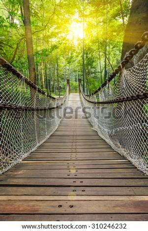 Suspension bridge in the forest #310246232