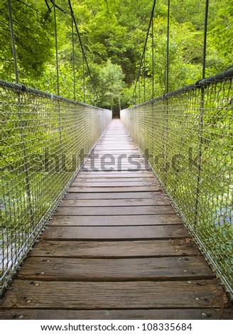 """Suspension bridge in the forest. This bridge is located in the natural park """"Fragas do Eume"""" Pontedeume, Galicia, Spain."""