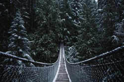 Suspension bridge in the forest. Winter Wonderland. Vancouver nature. Pacific north west. Snow day. Vancouver landscape.