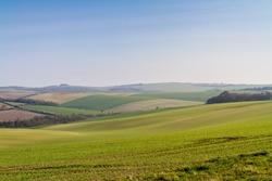 Sussex Patchwork Landscape