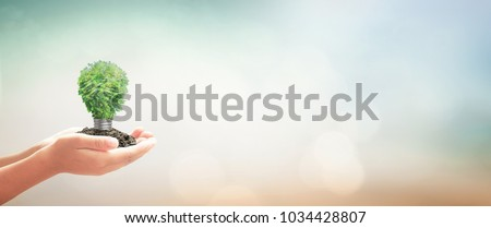 Sustainable energy concept: Human hand holding light bulb of tree on blurred nature background #1034428807