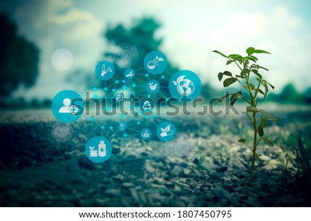 Sustainable energy with technology icon on blurred gentle artistic nature background, Environment and Ecology concept. AI Futuristic Smart virtual screen interface. Free space for text. Clipping path stock photo