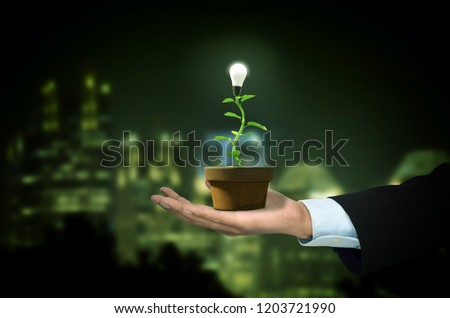Sustainable or renewable green energy concept illustrated with a tree seedling grow and lit a led bulb as fruit. Mixed media. 3d Rendering and Photo.