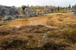Swamp or lake with megalithic seid boulder stones, dead trees in a nature reserve on mountain Vottovaara, Karelia, Russia. Autumn landscape.