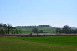 swampland nature reserve in the Eifel: 'Thürer Wiesen'