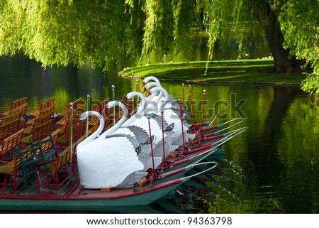 Swan boats at the Boston Public Garden in the Spring.