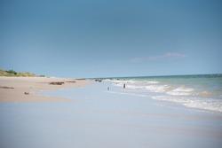 Swash zone on the beach.