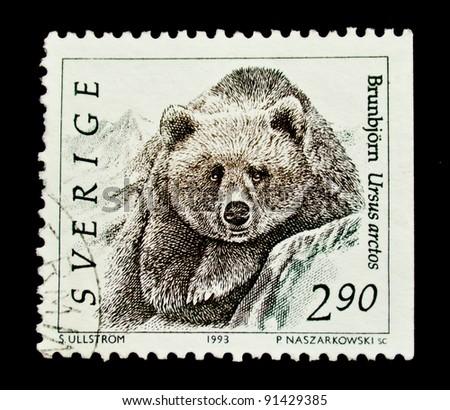 SWEDEN - CIRCA 1993: A stamp printed in Sweden shows  bear, circa 1993