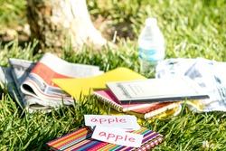 Swedish and English; Learning New Language with Handwritten Flash Cards. Translation; Apple