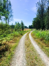 Swedish countryside road on a sunny summer day. Forest gravel road.