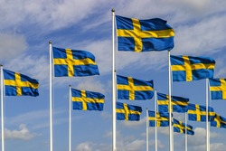 Swedish flags swaying in the wind
