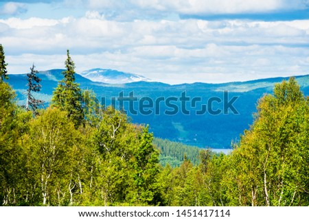 Swedish mountain landscape in northern Sweden called Stekenjokk and is located along the Wilderness Road  #1451417114
