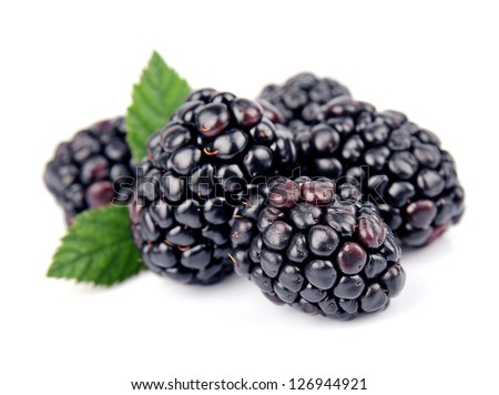 Sweet and juice blackberry fruit with leafs close up on white