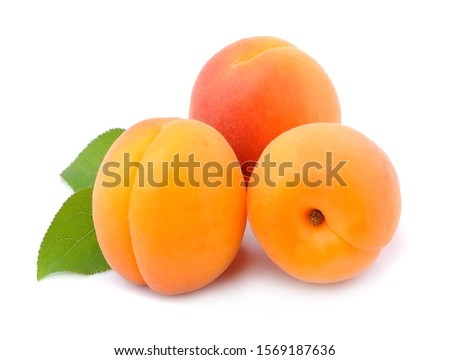 Sweet apricots isolated on white backgrounds. Сток-фото ©
