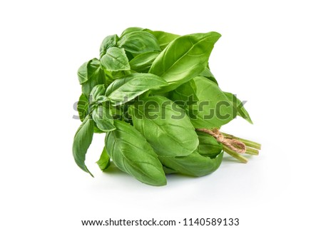 Sweet basil herb leaves bunch isolated on white background. Sweet Genovese basil. Foto d'archivio ©