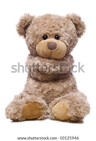 Sweet bear isolated on white background