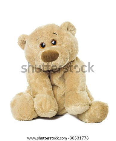 Sweet bear isolated on white background